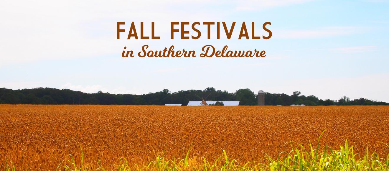 fall-festivities