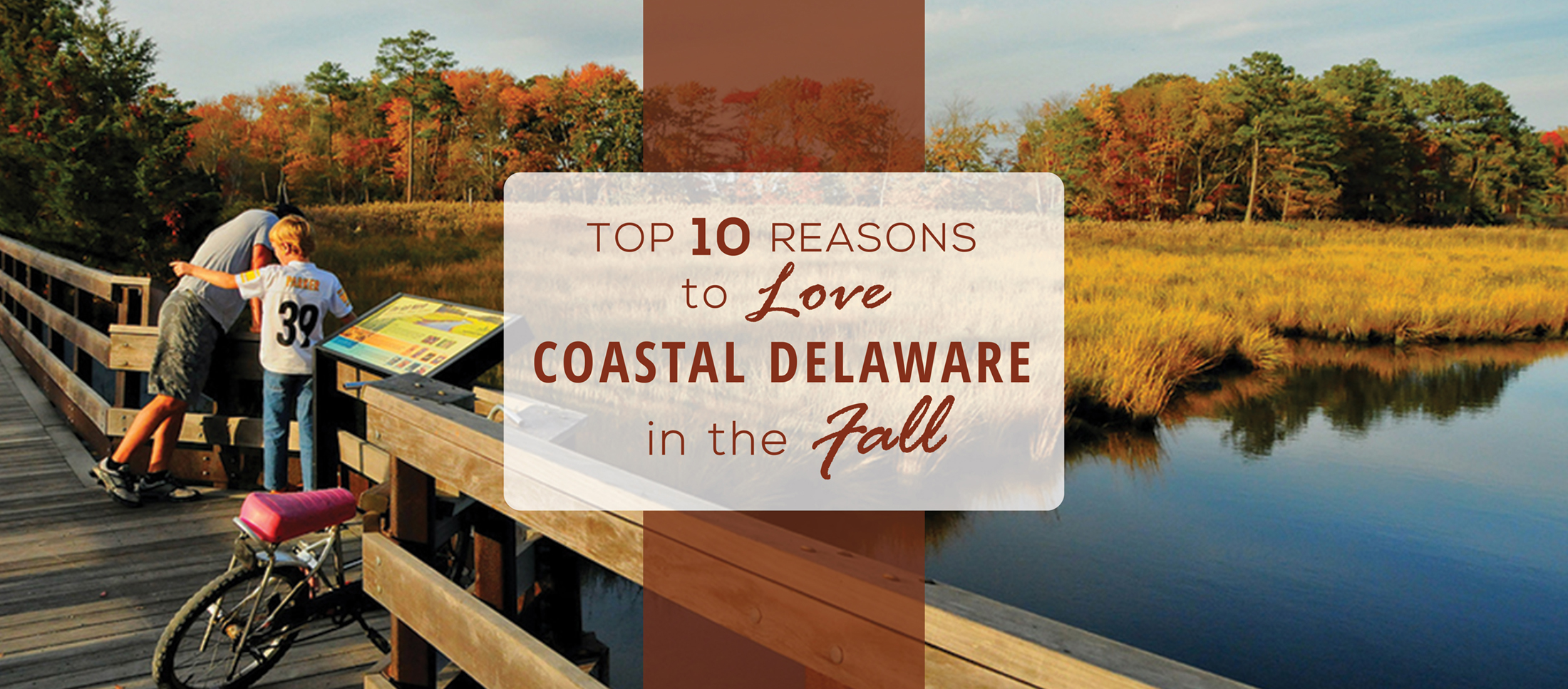 Delaware in the fall