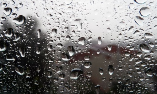 Heavy Rainfall and Extreme Wind Expectations