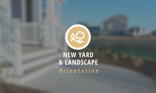 New Yard and Landscape Orientation